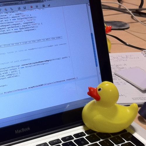 Programavimo kursai pradedantiesiems